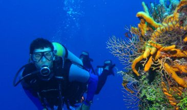 Scuba Diving Tour From Alanya