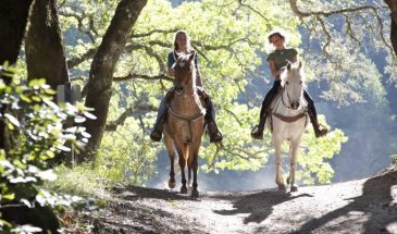 Alanya Horseback Riding Tour